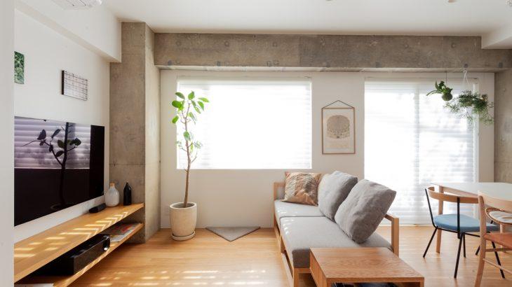 リノベーション事例公開|猫も家族も心地よく暮らせる、スタイルのある家
