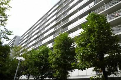 【リノベ向き団地】敷地内の緑道を優雅にお散歩@東陽町