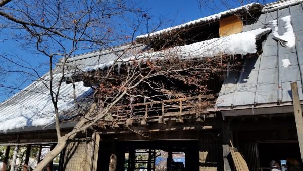 昔は養蚕を営んでいた家だったそうです。