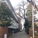 【リノベ向き物件】緑に囲まれ閑静な住宅地でゆったり生活