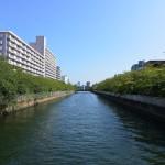 【団地マニア】シティコープ千石紹介記事を公開しました!