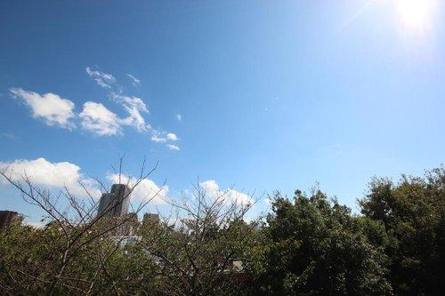【物件紹介】そこにあるのは、空と緑