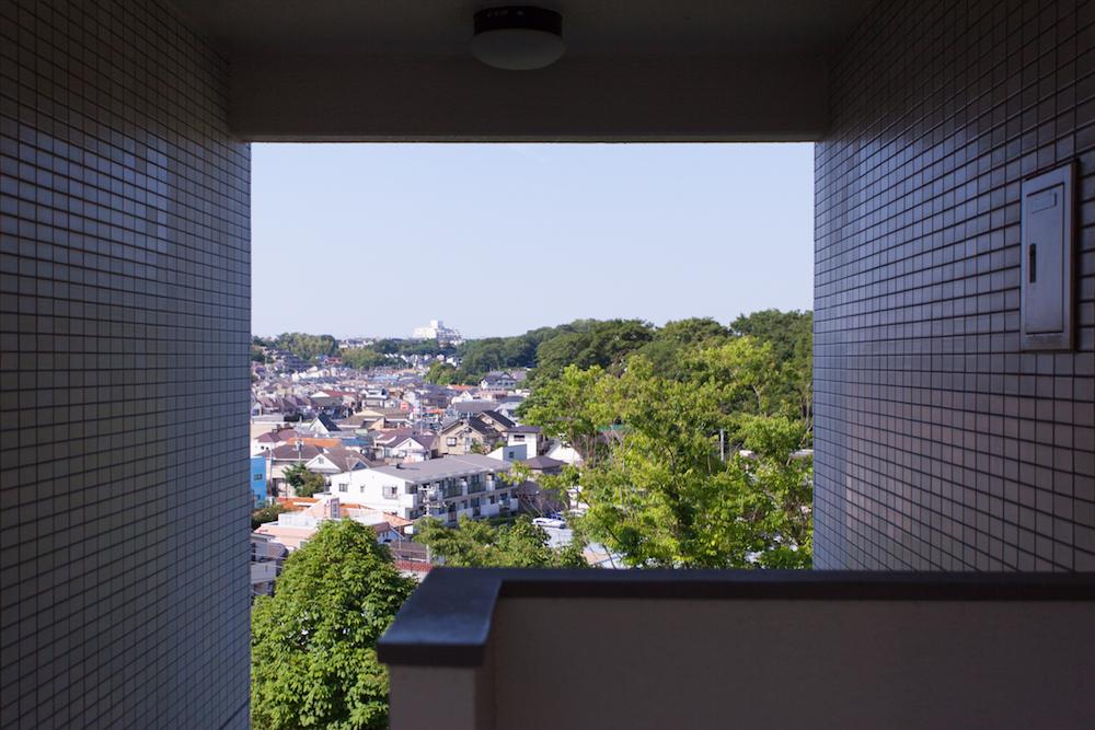 階段からの眺望