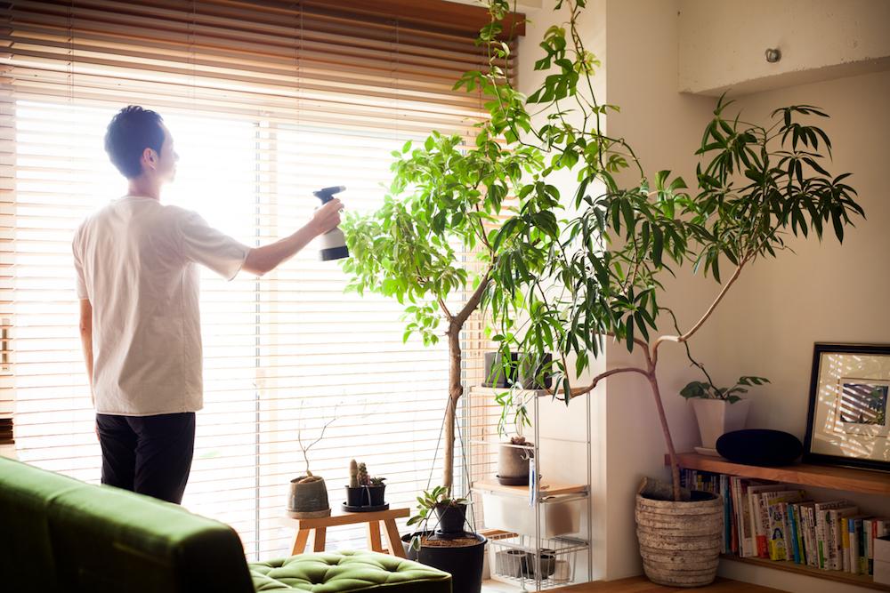 植物のお手入れ